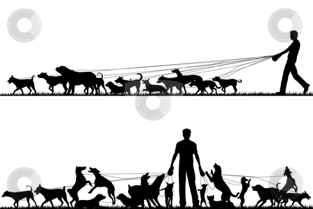 Dog walker stock vector clipart, Two foreground silhouettes of a man walking many dogs with all elements as separate editable objects by Robert Adrian Hillman