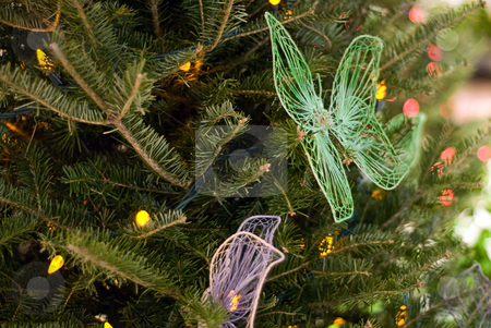 Christmas Decorations stock photo, Some butterflies used as christmas decorations on a pine tree by Richard Nelson