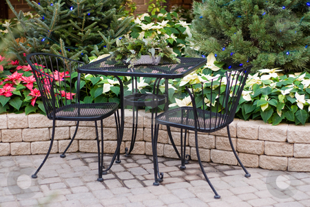 Table For Two stock photo, A table for two shot near a garden with poinsettia plants by Richard Nelson