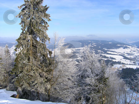 Winter mountain landscape stock photo, Winter landscape - snow covered forest in the mountains by Olga Lipatova