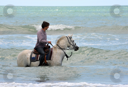Man and horse in sea stock photo, Riding man and his white horse in the sea by Bonzami Emmanuelle