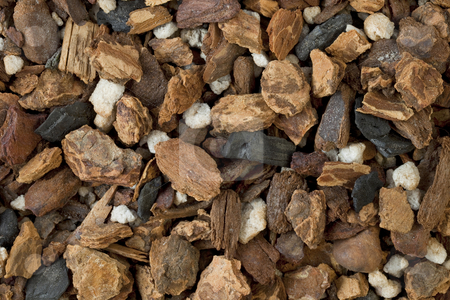 Orchid bark mix stock photo, Background of orchid bark mix, contains fir bark, charcoal and sponge rock by Marek Uliasz