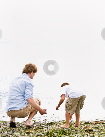 Father and son gathering rocks at beach stock photo, Father and son gathering rocks at beach by Jonathan Ross