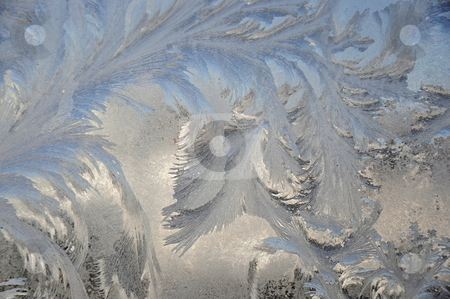 Wings stock photo, Ice on door by Richard Sheehan