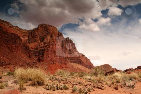 Red desert cliffs stock photo, Desert landscape near the Utah Arizona border by Greg Peterson