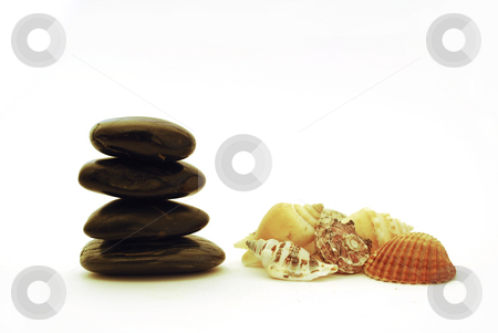 Spa stones and shell stock photo, Stack of balanced stones with sea shell isolated on white background by Tudor Antonel adrian