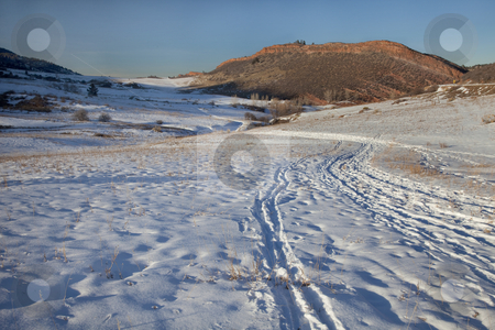 Winter trail in Colorado Rocky Mountains stock photo, Winter trail with footprints, cross country ski and snowshoe tracks at foothills of Rocky Mountains near Fort Collins, Colorado by Marek Uliasz