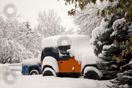 Cars after winter snow storm stock photo, Early morning driveway scene in Fort Collins, Colorado - cars after heavy November snow storm by Marek Uliasz
