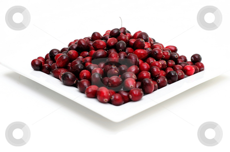 Cranberry On White stock photo, Cranberries in various shades of red on a square plate isolated on white by Lynn Bendickson