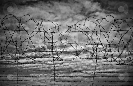 Restrictions barbed wire black and white stock photo, Excellent image of barbed wire rolls in black and white by Phil Morley