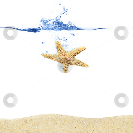 Starfish Splash stock photo, Starfish sinking into an ocean above sand. by Christopher Nuzzaco