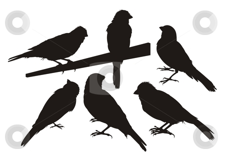 Canary bird silhouettes stock vector clipart, Six canary bird silhouettes. by fractal.gr