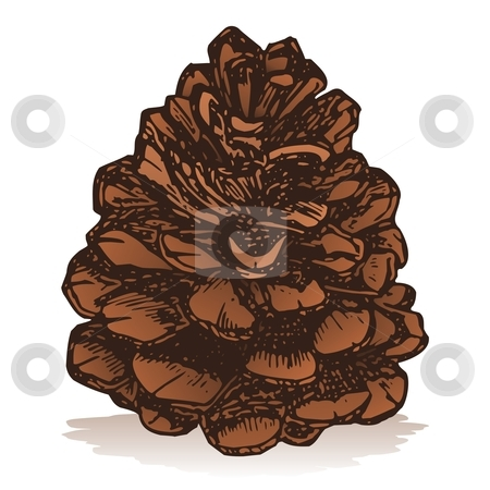 Pinecone stock vector clipart, Pinecone icon isolated on white background sketch style by fractal.gr