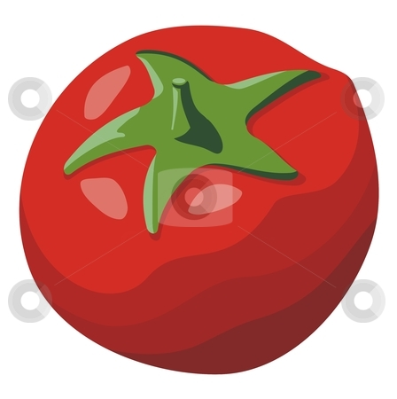 Tomato stock vector clipart, Red tomato simple illustration isolated on white background by fractal.gr
