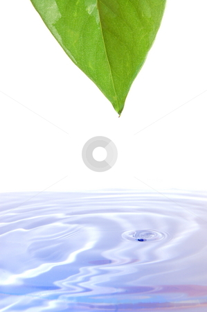 Health and wellness concept  stock photo, Health and wellness concept with splashing water drop and leaf by Gunnar Pippel