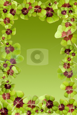 Lucky border stock photo, Frame of lucky four leaf clovers on a green background by Anneke