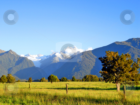 Evening light over a grassy field in front of Mount Cook and Mou stock photo, Evening light over a grassy field in front of Mount Cook and Mount Tasman, New Zealand by Cloudia Newland