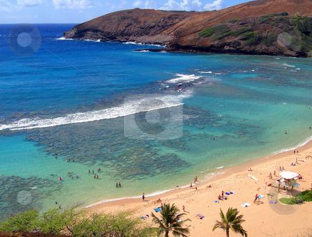 Snorkeling and Sunbathing at Hanauma Bay, Oahu, Hawaii stock photo, Snorkeling and Sunbathing at Hanauma Bay, Oahu, Hawaii by Cloudia Newland