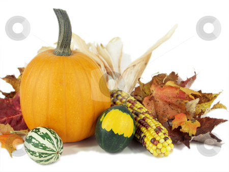 Autumn arrangement stock photo, A pumpkin, gourds, leaves and indian corn form a pleasing arrangement isolated. by Christy Thompson