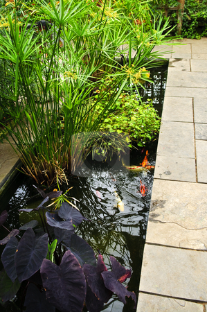 Lush green garden stock photo, Lush green garden with stone landscaping and koi pond by Elena Elisseeva