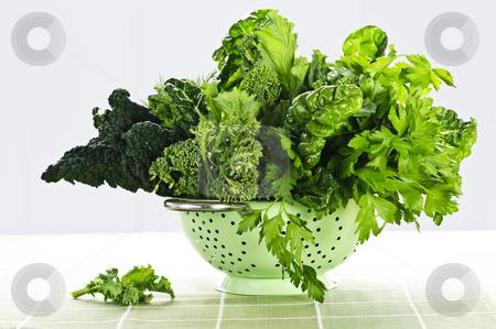 Dark green leafy vegetables in colander stock photo, Dark green leafy fresh vegetables in metal colander by Elena Elisseeva