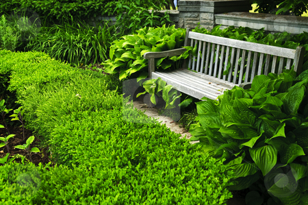 Lush green garden stock photo, Lush green garden with stone landscaping, hedge and bench by Elena Elisseeva