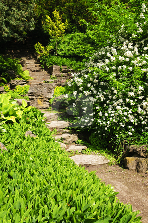 Natural stone garden steps stock photo, Landscaped garden path with natural stone steps by Elena Elisseeva