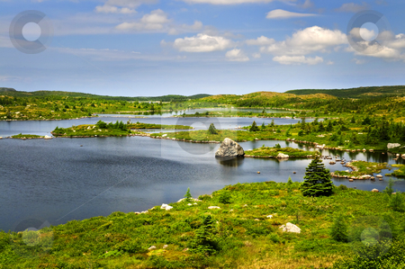 Beautiful lake shore in Newfoundland stock photo, Scenic beautiful lake shore and hillside in Newfoundland, Canada by Elena Elisseeva