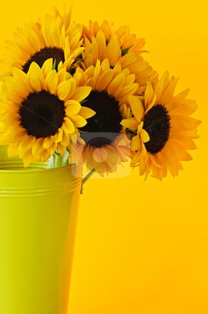 Sunflowers in vase stock photo, Bouquet of sunflowers in yellow metal vase by Elena Elisseeva