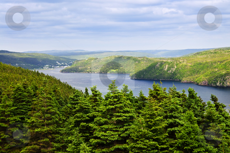 Placentia Bay in Newfoundland stock photo, Scenic view of Placentia bay in Newfoundland, Canada by Elena Elisseeva
