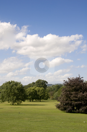 Parkland stock photo, A view of parkland in summerwith a cloudy sky by Mark Bond