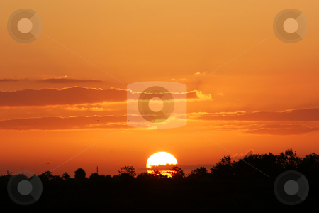 Gods magic stock photo, The sun rising over the horizon, trees in silhouette against it and the clouds painted in golden light by Johann Helgason