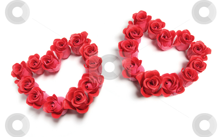 Roses Love Hearts stock photo, Roses Love Hearts on Isolated White Background by Lai Leng Yiap