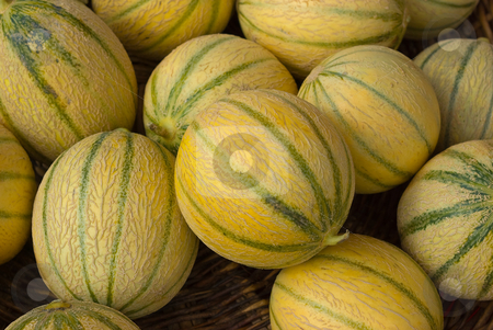 Charentais Melone - Cantaloupe  stock photo, Eine Charentais ist eine Melonensorte; es ist eine Zuchtform der urspr?nglichen europ?ischen Cantaloupe-Melone (Cucumis melo var. cantalupensis), die wiederum eine Variet?t der Zuckermelone  (Cucumis melo) ist. - Cantaloupe (also cantaloup, muskmelon  or rockmelon) refers to two varieties of Cucumis melo [1], which is a species in the family Cucurbitaceae, which includes nearly all melons and squashes. by Wolfgang Heidasch