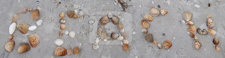 Beach Shells stock photo, Shells set out to spell beach along the Gulf of Mexico by Bill Swiger
