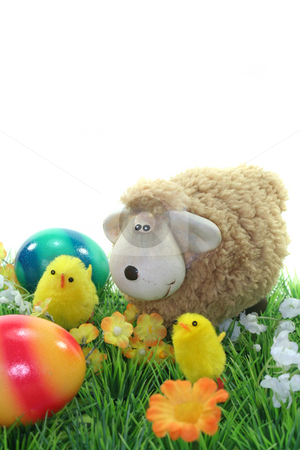 Sheep with eggs and chicks in a meadow stock photo, Passover with chicks and Easter eggs on a flower meadow by Marén Wischnewski