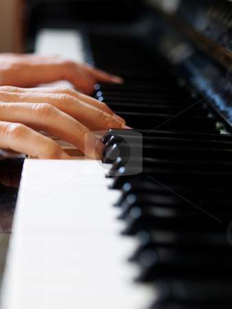 Pianist stock photo, Pianist playing with selective focus on fingers by Laurent Dambies