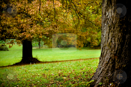 Park in the fall stock photo, Old park in Germany in the fall by Val Thoermer
