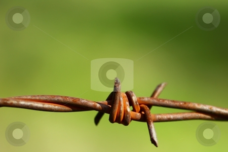 Close-up of old rusty twisted barbed wire. stock photo, Barbed wire by Gregory Dean