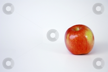 One large fresh apple stock photo, One large red apple by Gregory Dean