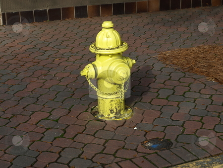 Fire Hydrant stock photo, A yellow fire hydrant on a city street by Tim Markley