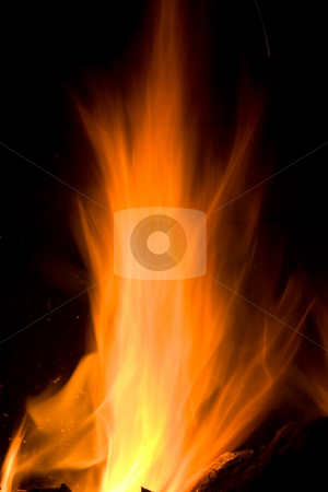 Flames of Fire stock photo, Flames of Fire in a Fireplace against a black Background by Mark Payne