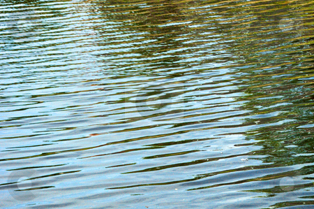Abstract ripples on a pond stock photo, Close up of water ripples on pond creating an abstract image. by Stephen Orsillo