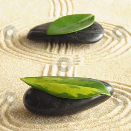 Zen harmoney stock photo, Harmony concept with zen stones and leaves by Gunnar Pippel