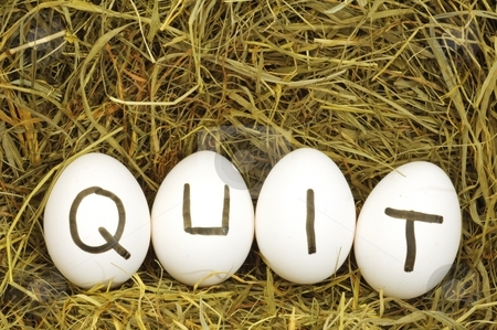 Quit stock photo, Quit written on eggs in hey or straw by Gunnar Pippel