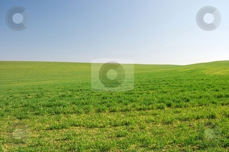 Field stock photo, Bright empty green field with small hills by P?