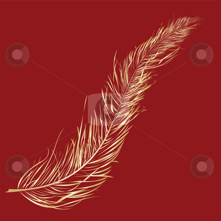 Gold feather  stock photo, Gold feather over red background- clip art by Richard Laschon