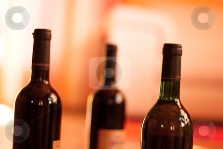 Wine stock photo, Wine bottles in a room by P?