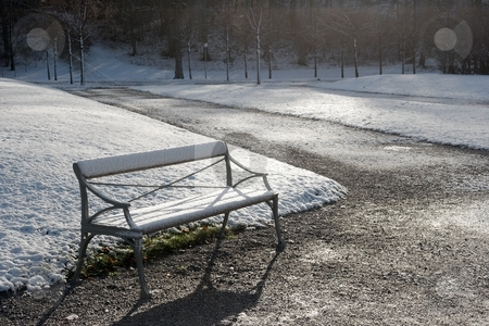 Bench stock photo, Snowy bench in a park in winter by P?