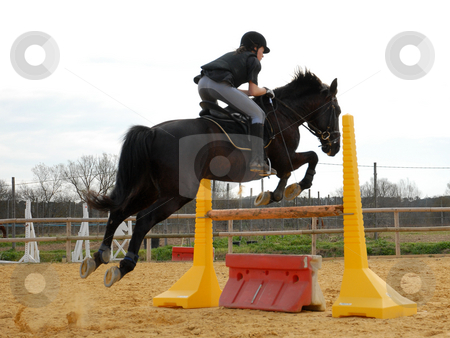 riding girl stock photo, Young woman and her black stallion in a training of competition by Bonzami Emmanuelle